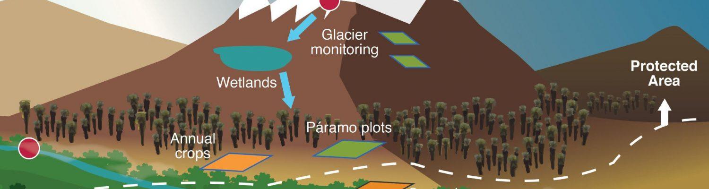 Figure by Luis D. Llambí et al