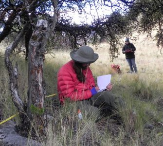 Andean Forest Program grantee Meagan Mazzarino and field assistant Spencer Bronk collecting data on Polylepis woodlands in Puno, Peru. Photo by Robin R. Sears
