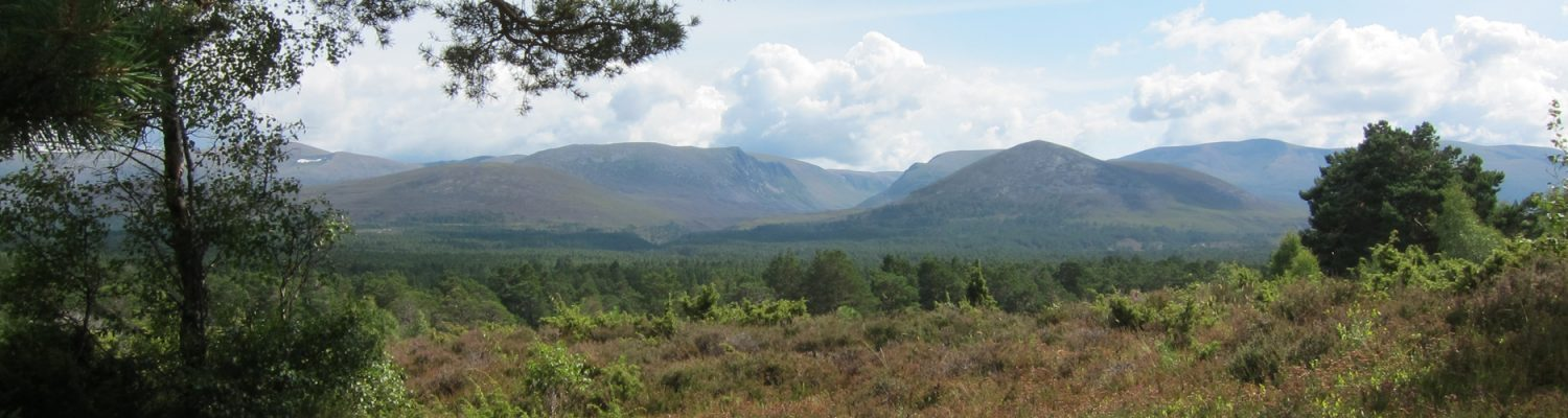 View of the Cairngorms from Aviemore, Scotland. Photo by Marlène Thibault
